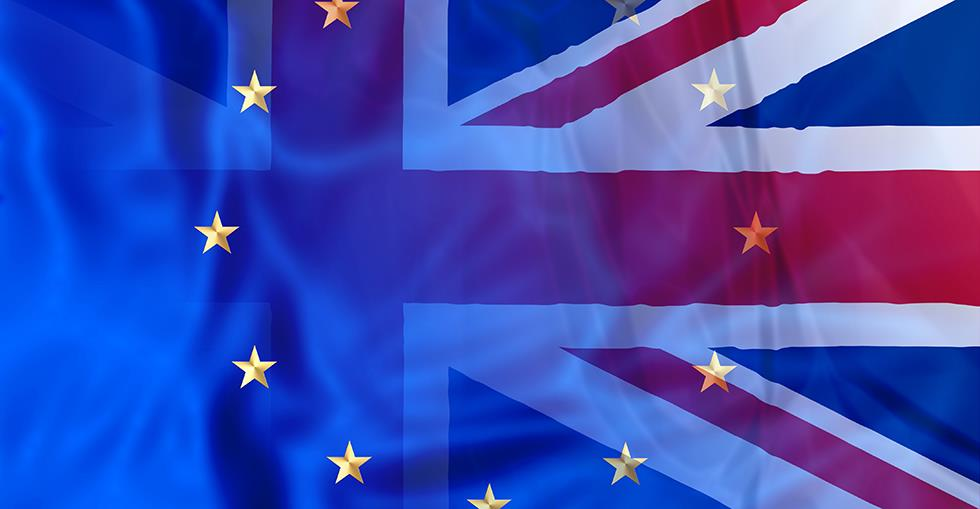 article Article 50: what do small businesses want? image